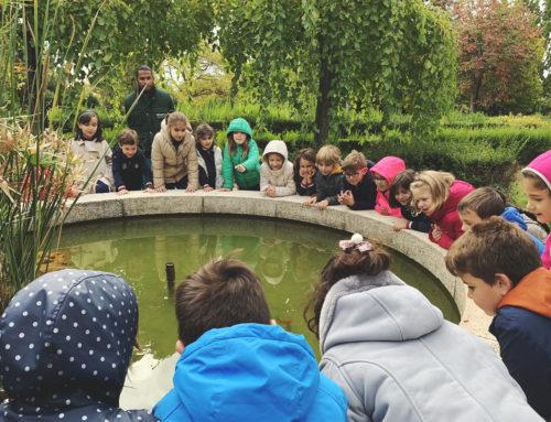 Visita a la Escuela Municipal de Jardinería El Pinar