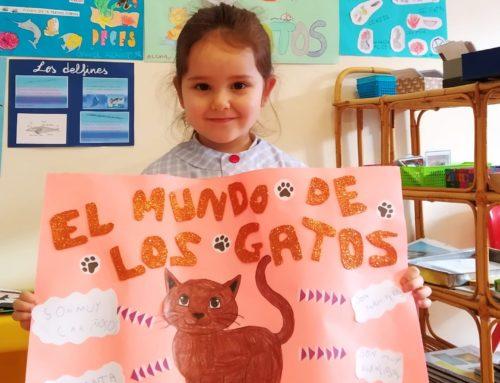 Proyecto animales en segundo de Infantil