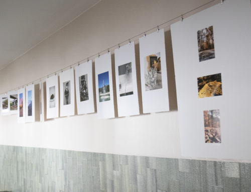 Exposición fotográfica 2º de ESO